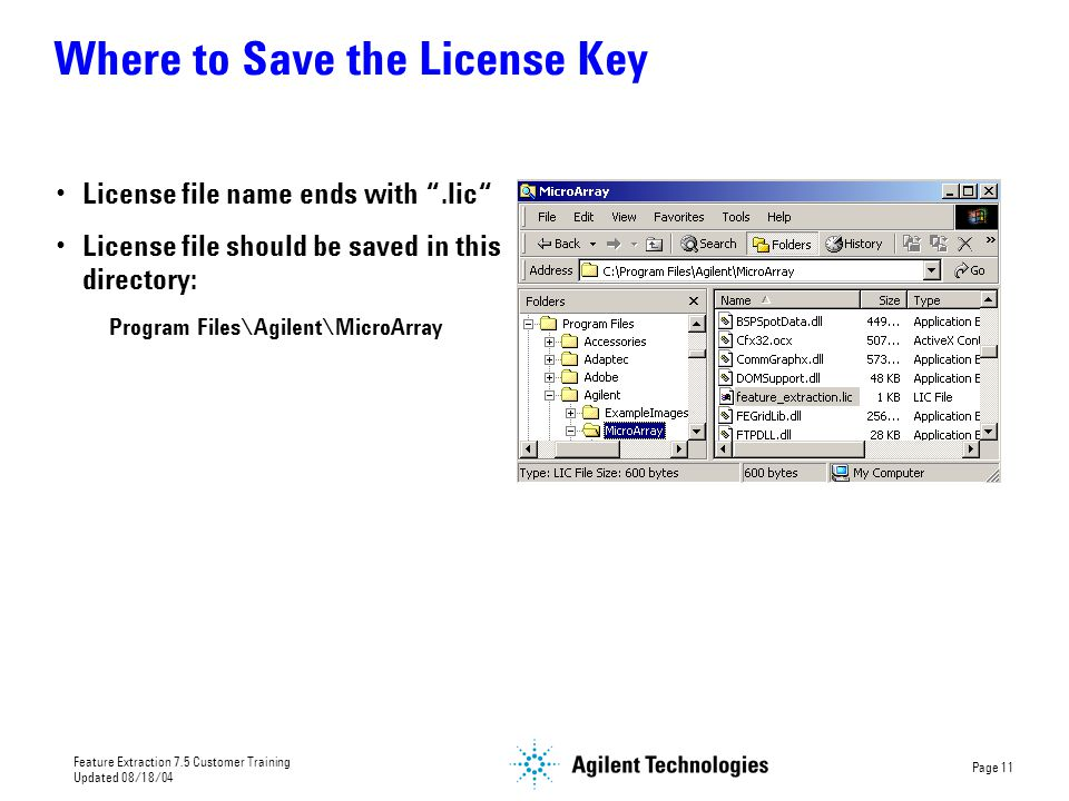 Where to Save the License Key