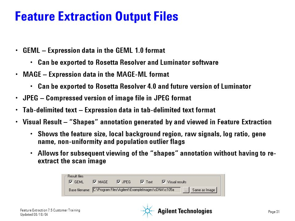 Feature Extraction Output Files