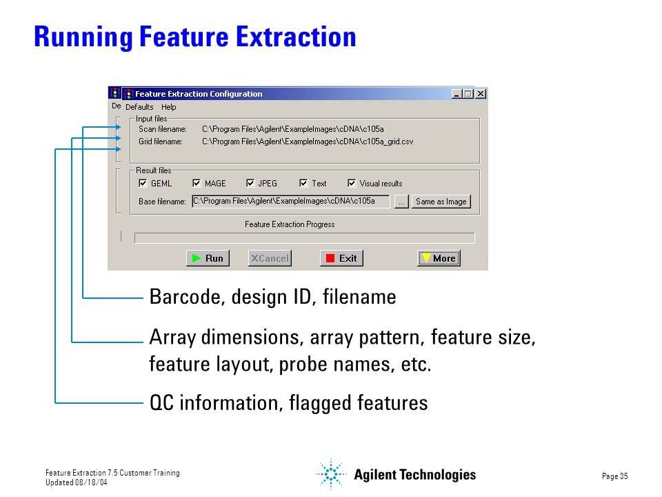 Running Feature Extraction