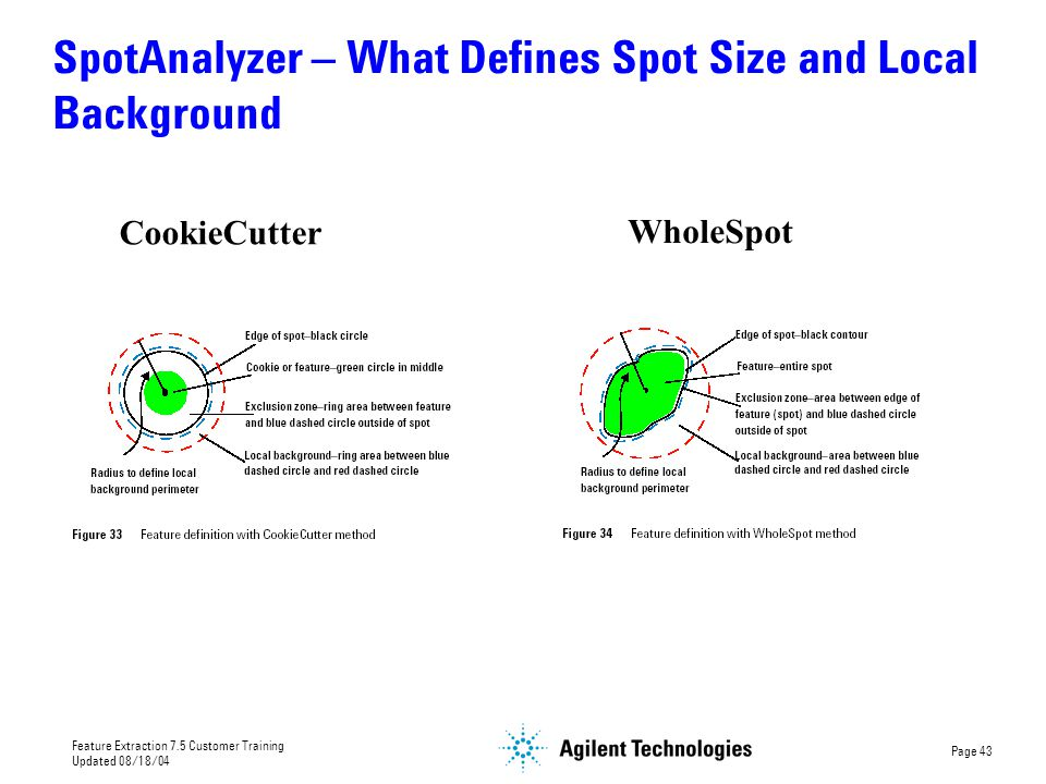 SpotAnalyzer – What Defines Spot Size and Local Background
