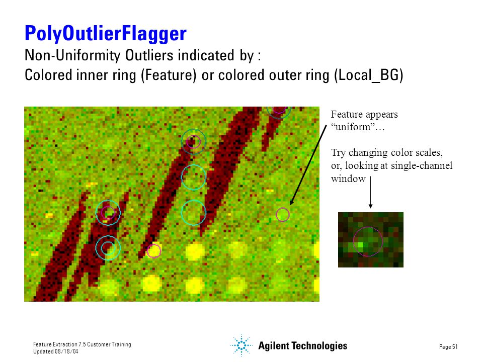 PolyOutlierFlagger Non-Uniformity Outliers indicated by : Colored inner ring (Feature) or colored outer ring (Local_BG)