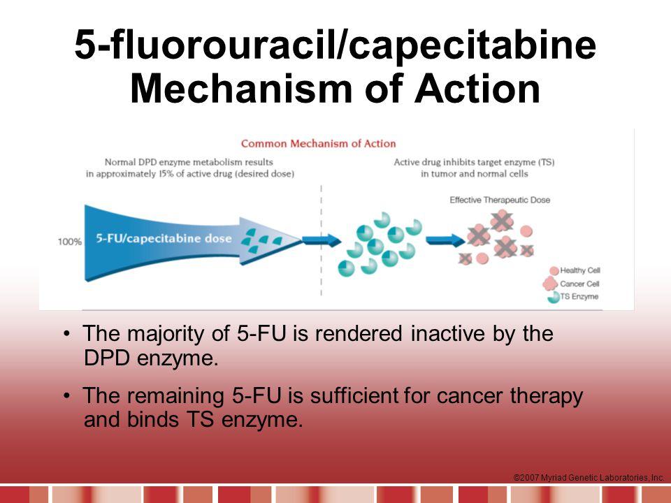 5-fluorouracil/capecitabine Mechanism of Action
