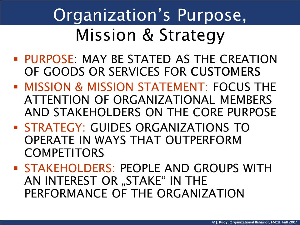 Organization's Purpose, Mission & Strategy