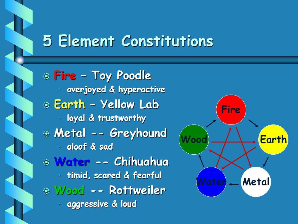 5 Element Constitutions