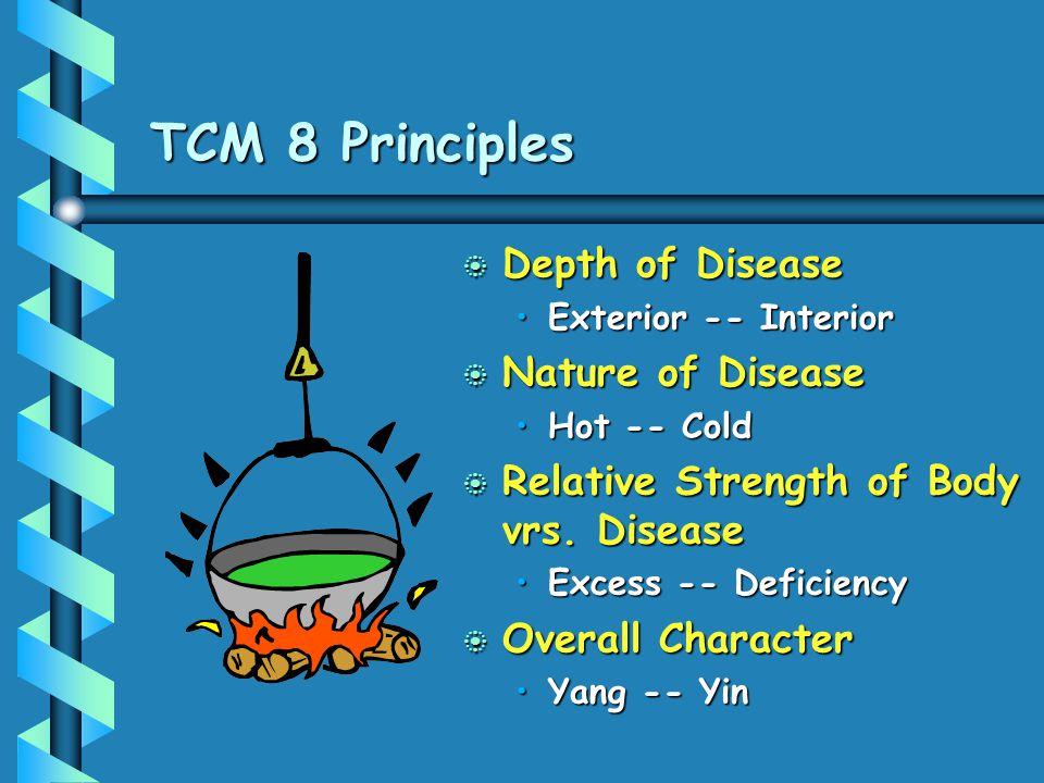TCM 8 Principles Depth of Disease Nature of Disease