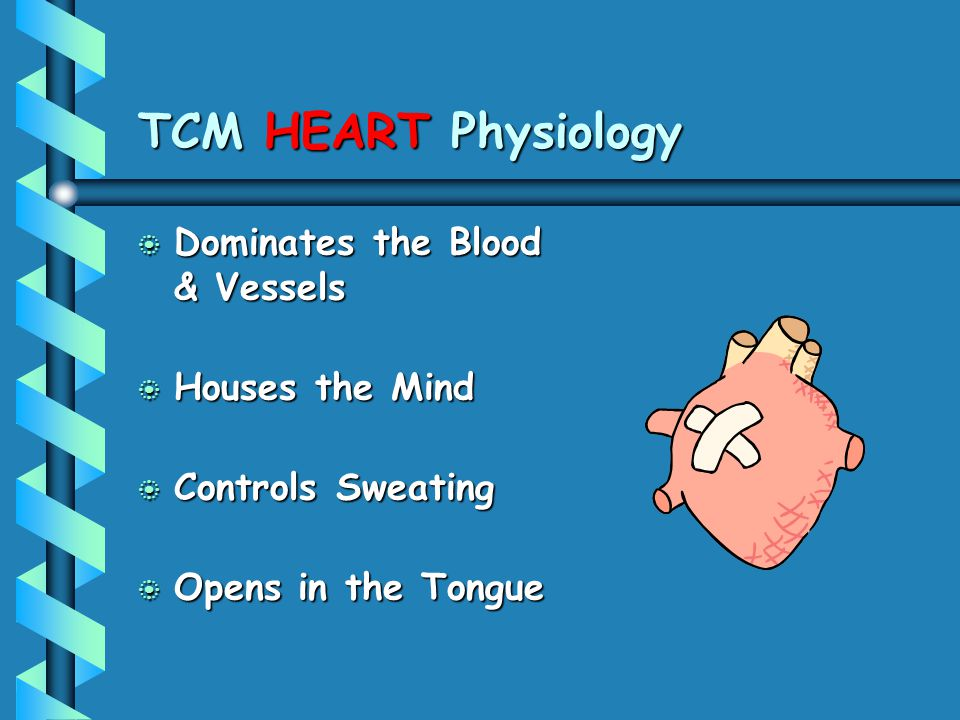 TCM HEART Physiology Dominates the Blood & Vessels Houses the Mind
