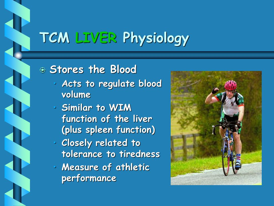 TCM LIVER Physiology Stores the Blood Acts to regulate blood volume