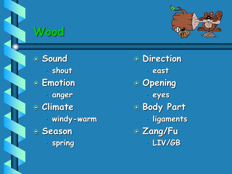 Wood Sound Emotion Climate Season Direction Opening Body Part Zang/Fu