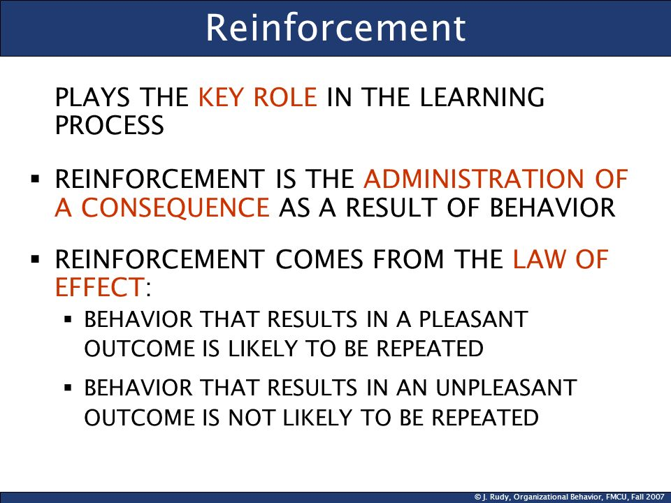 Reinforcement PLAYS THE KEY ROLE IN THE LEARNING PROCESS