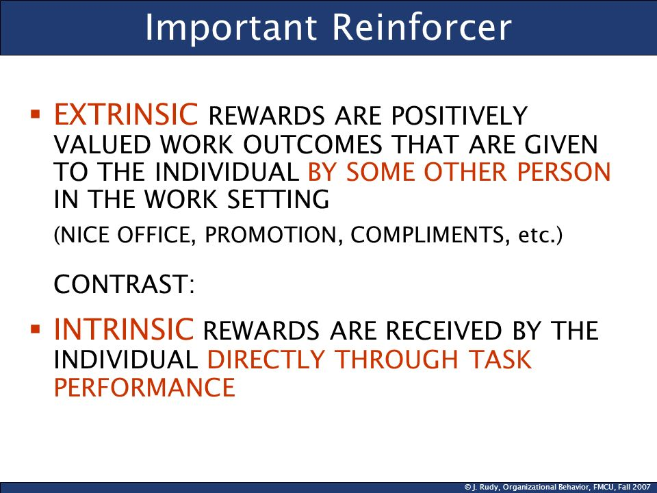 Important Reinforcer EXTRINSIC REWARDS ARE POSITIVELY VALUED WORK OUTCOMES THAT ARE GIVEN TO THE INDIVIDUAL BY SOME OTHER PERSON IN THE WORK SETTING.