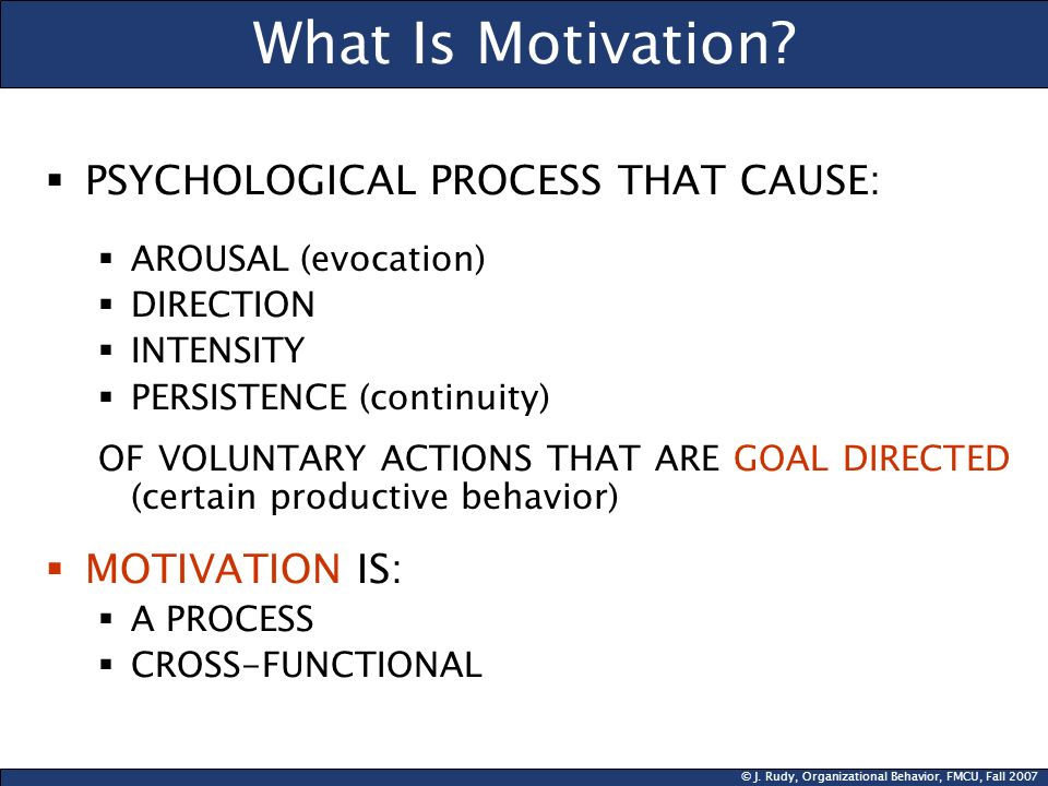 What Is Motivation PSYCHOLOGICAL PROCESS THAT CAUSE: MOTIVATION IS: