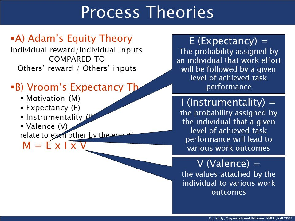 Process Theories A) Adam's Equity Theory E (Expectancy) =