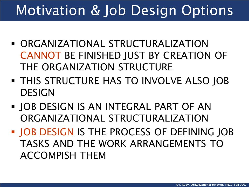 Motivation & Job Design Options
