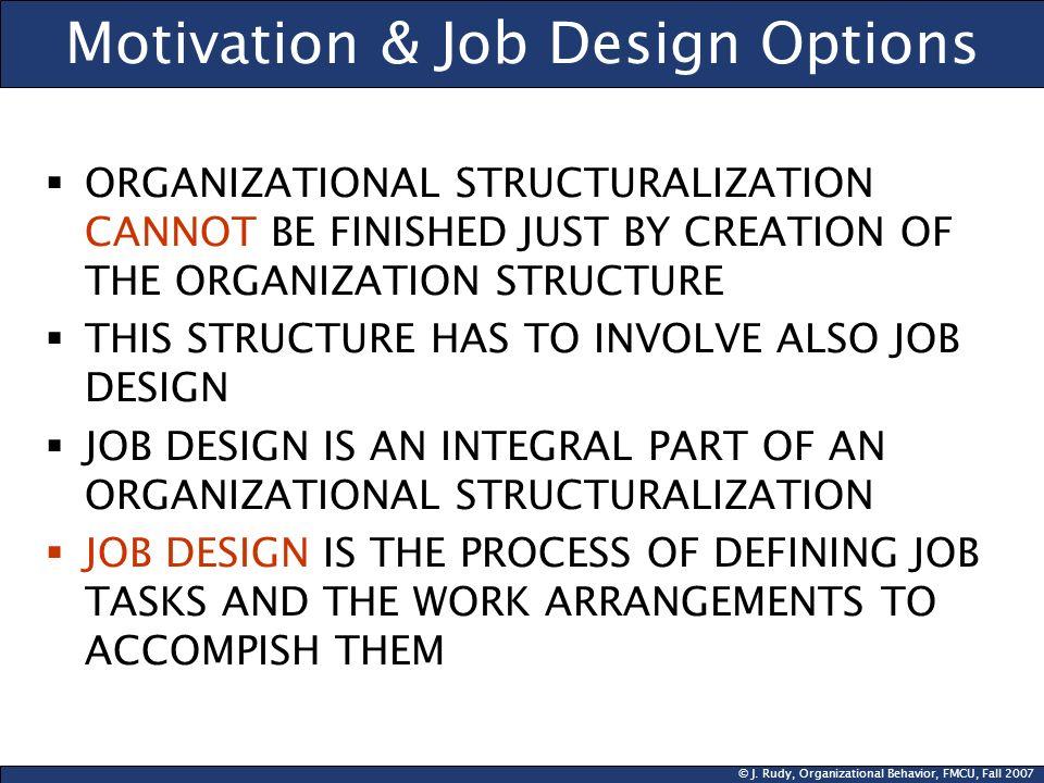 Motivation & Job Design Options