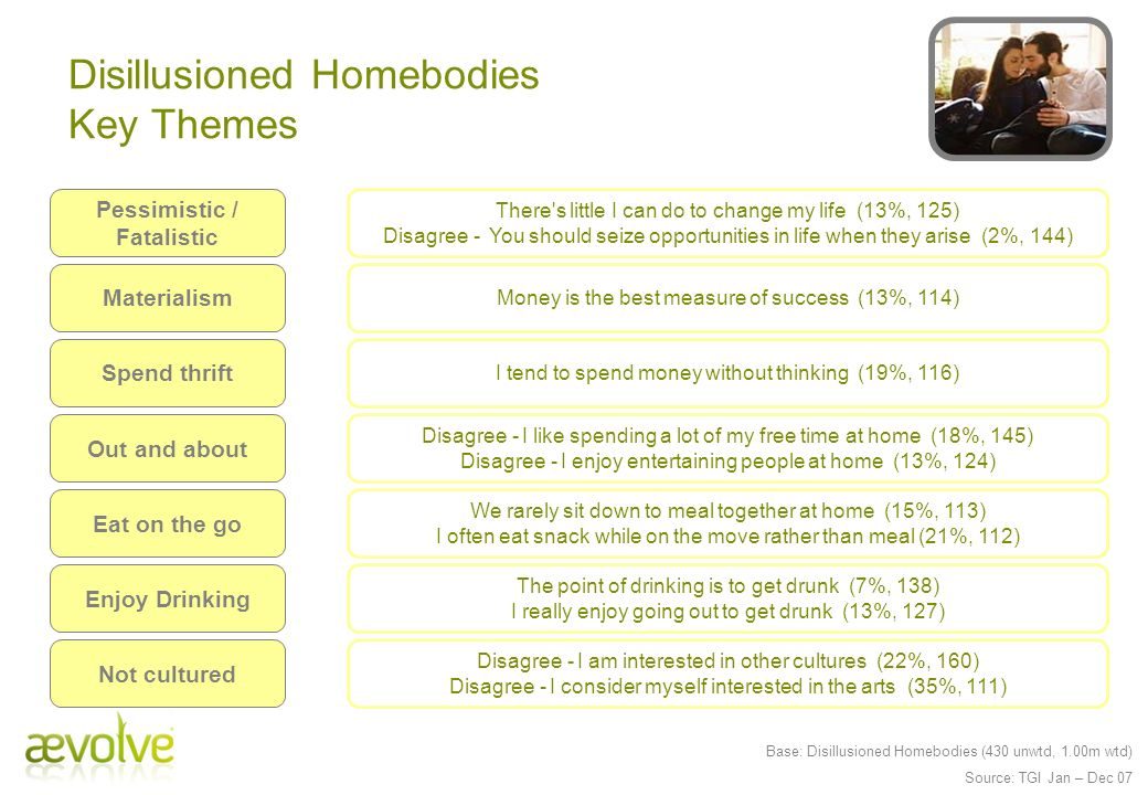 Disillusioned Homebodies Key Themes