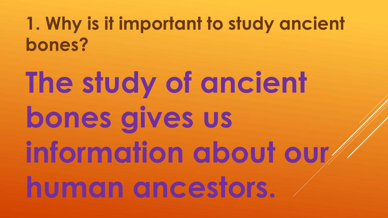 1. Why is it important to study ancient bones