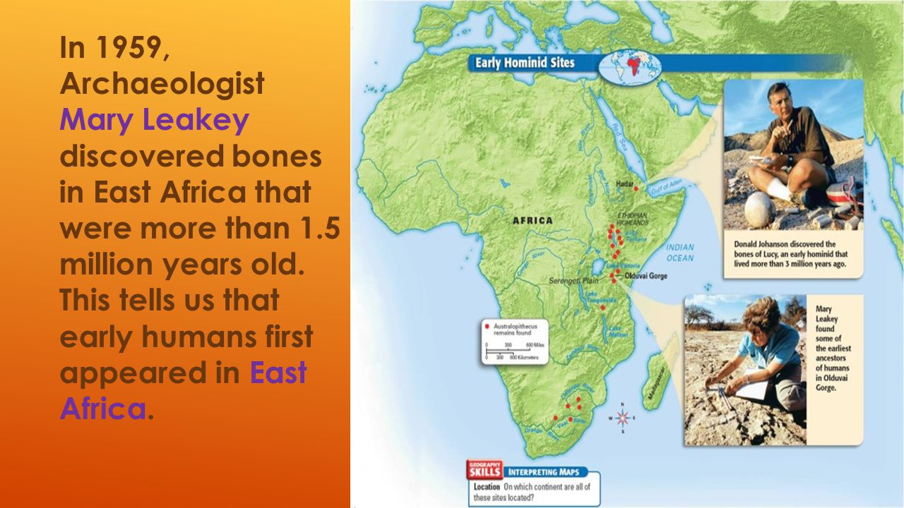 In 1959, Archaeologist Mary Leakey discovered bones in East Africa that were more than 1.5 million years old.