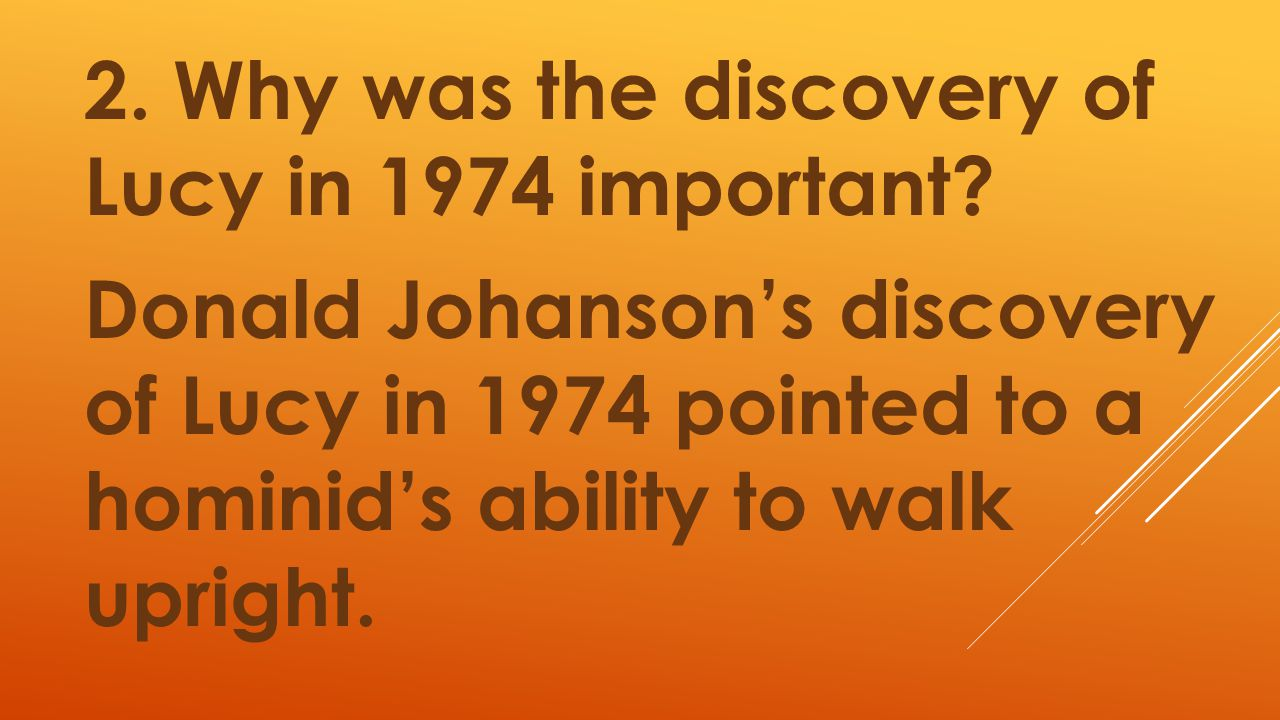 2. Why was the discovery of Lucy in 1974 important