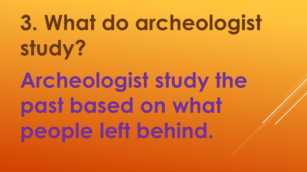 3. What do archeologist study
