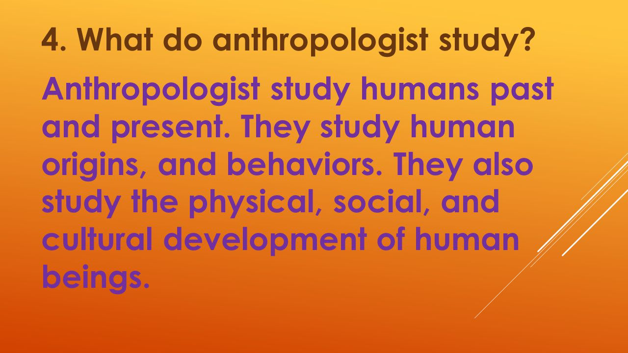 4. What do anthropologist study