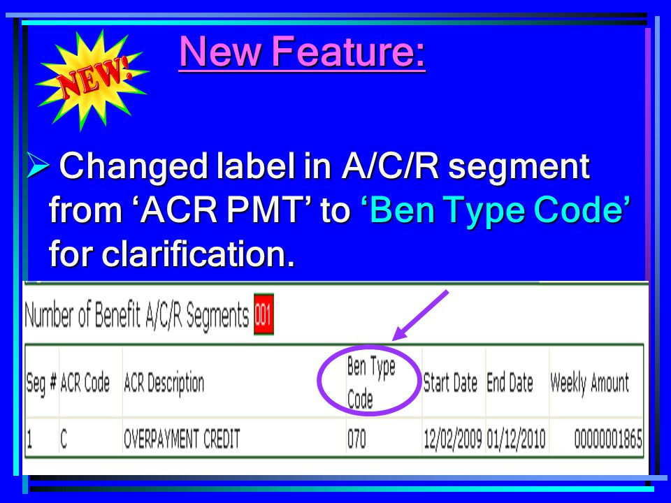 New Feature: Changed label in A/C/R segment from 'ACR PMT' to 'Ben Type Code' for clarification.