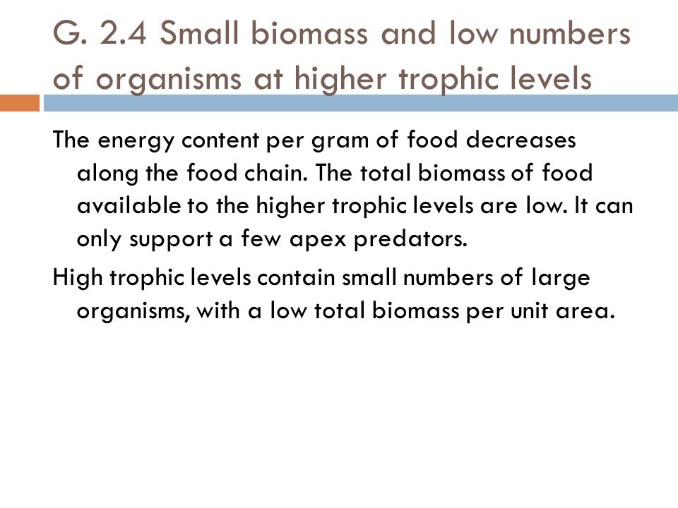 G. 2.4 Small biomass and low numbers of organisms at higher trophic levels