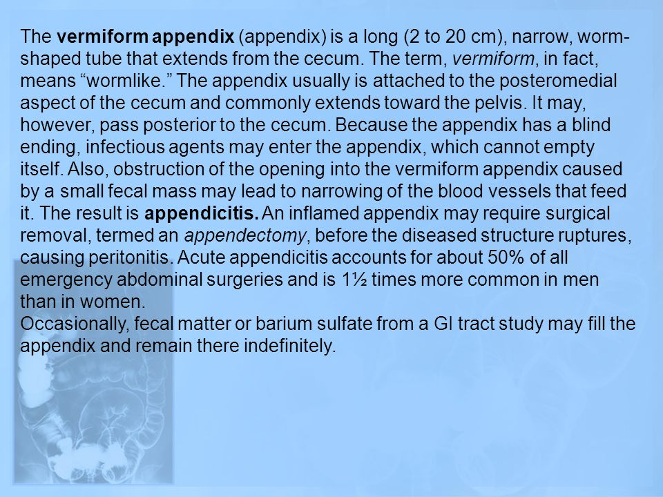The vermiform appendix (appendix) is a long (2 to 20 cm), narrow, worm-shaped tube that extends from the cecum. The term, vermiform, in fact, means wormlike. The appendix usually is attached to the posteromedial aspect of the cecum and commonly extends toward the pelvis. It may, however, pass posterior to the cecum. Because the appendix has a blind ending, infectious agents may enter the appendix, which cannot empty itself. Also, obstruction of the opening into the vermiform appendix caused by a small fecal mass may lead to narrowing of the blood vessels that feed it. The result is appendicitis. An inflamed appendix may require surgical removal, termed an appendectomy, before the diseased structure ruptures, causing peritonitis. Acute appendicitis accounts for about 50% of all emergency abdominal surgeries and is 1½ times more common in men than in women.