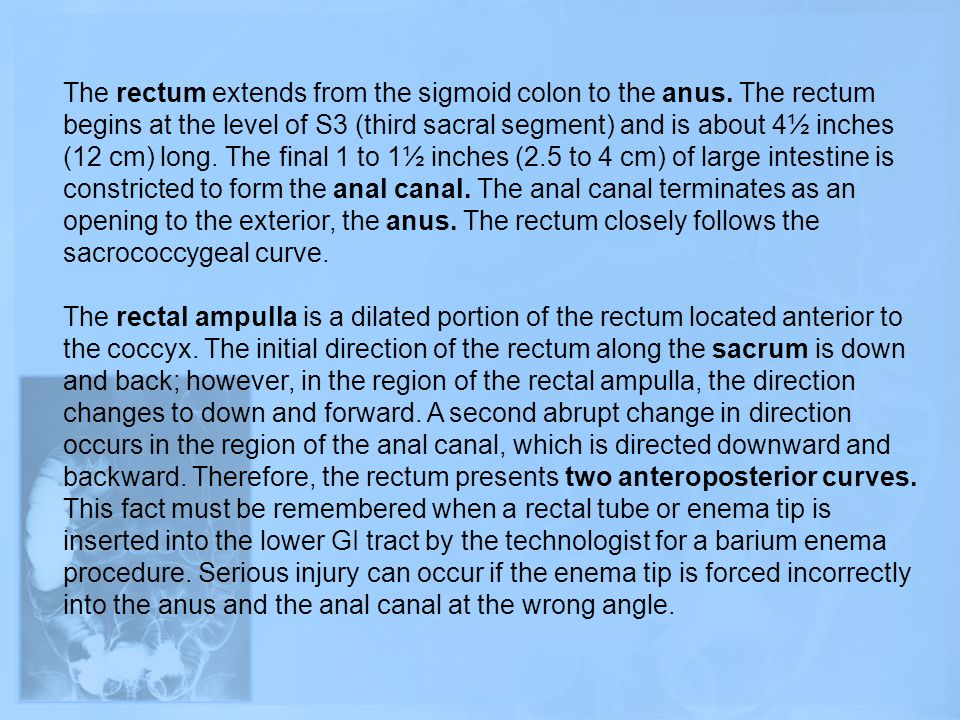The rectum extends from the sigmoid colon to the anus