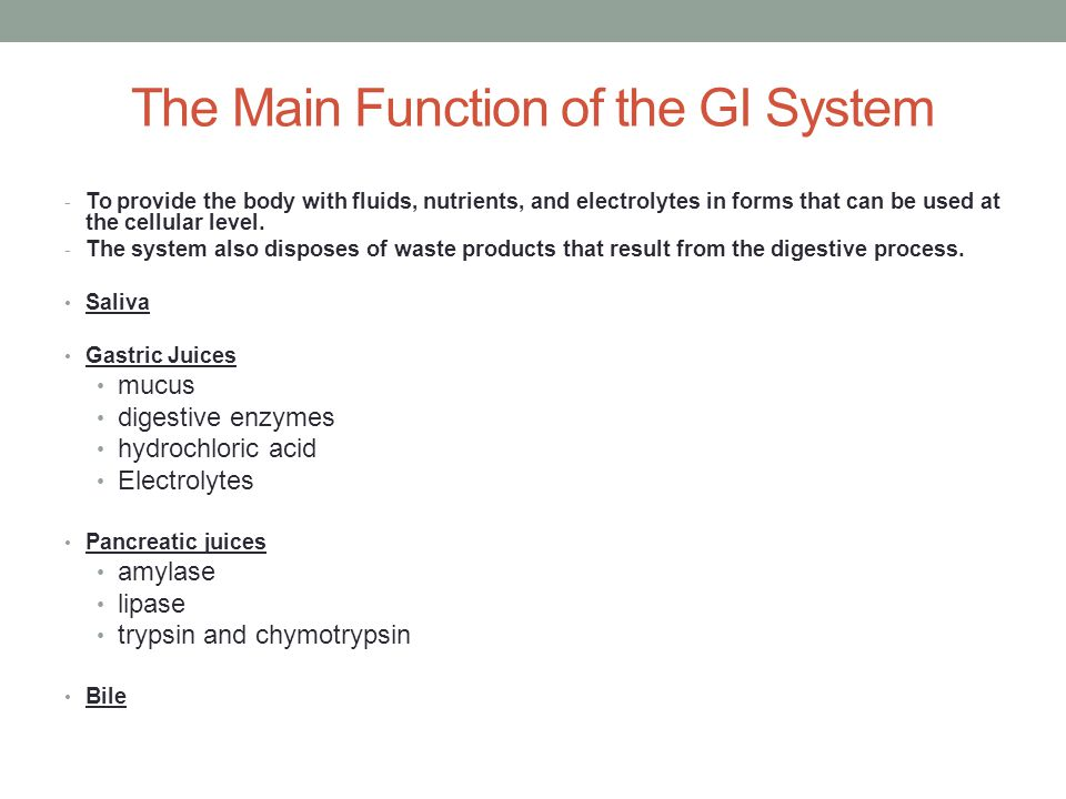 The Main Function of the GI System