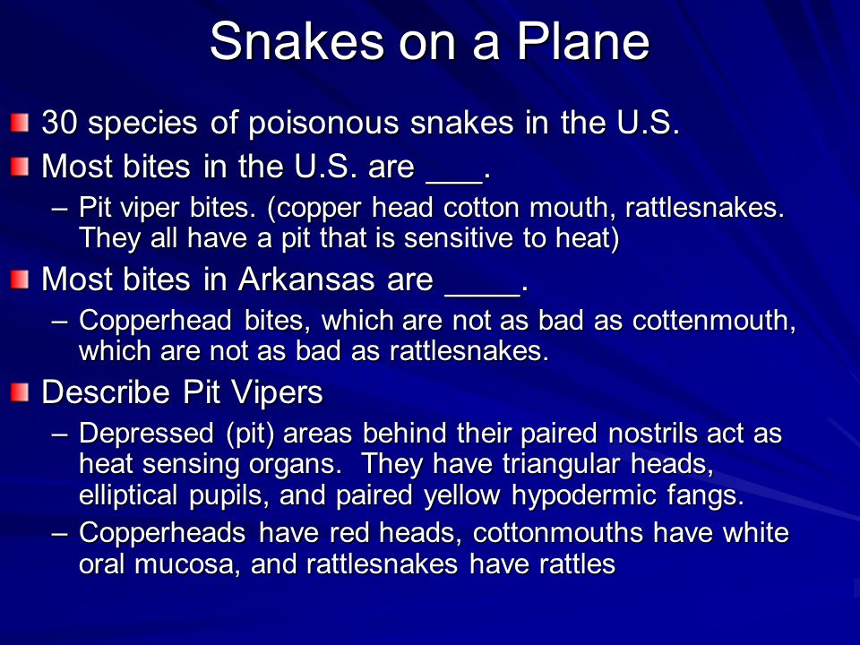Snakes on a Plane 30 species of poisonous snakes in the U.S.