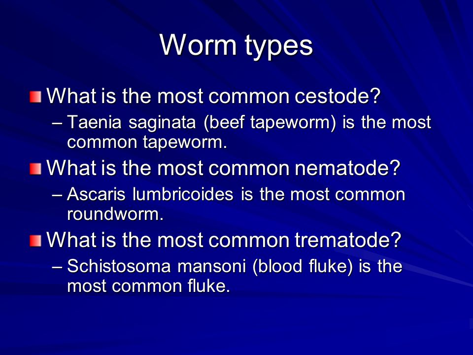 Worm types What is the most common cestode