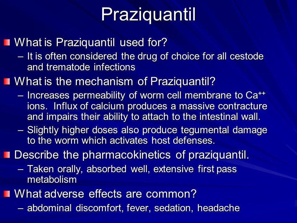 Praziquantil What is Praziquantil used for
