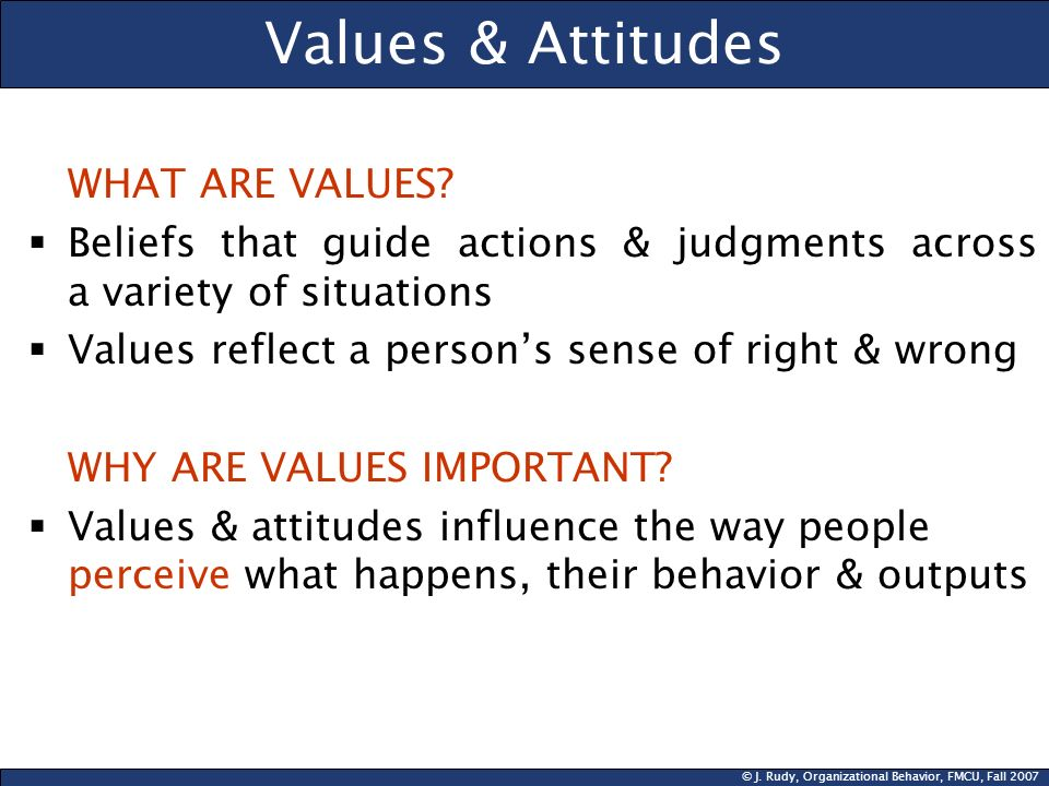 Values & Attitudes WHAT ARE VALUES