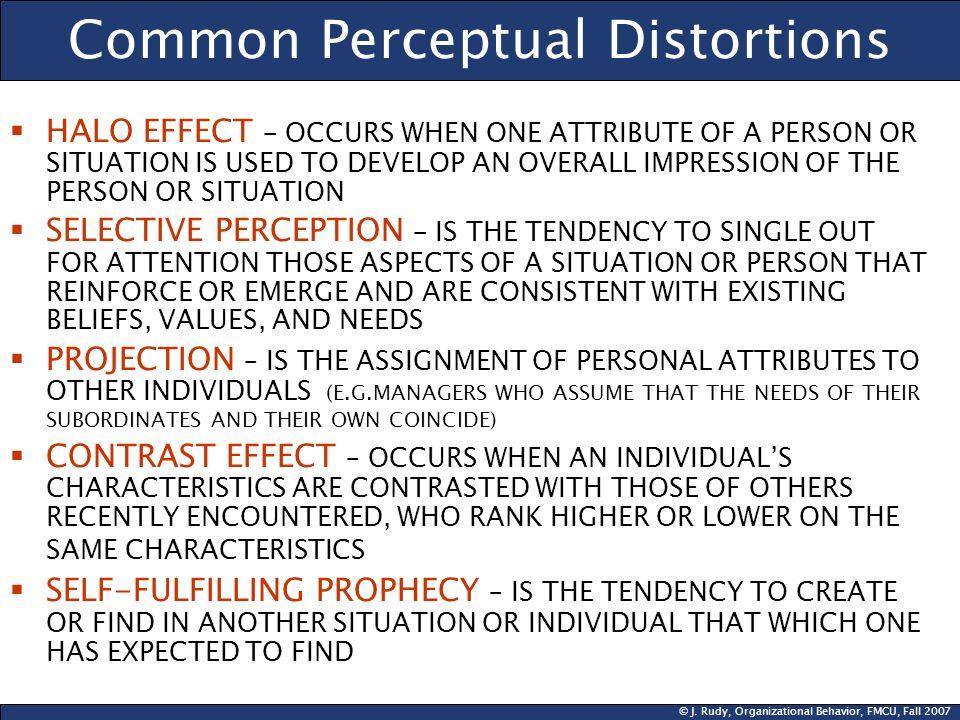 Common Perceptual Distortions
