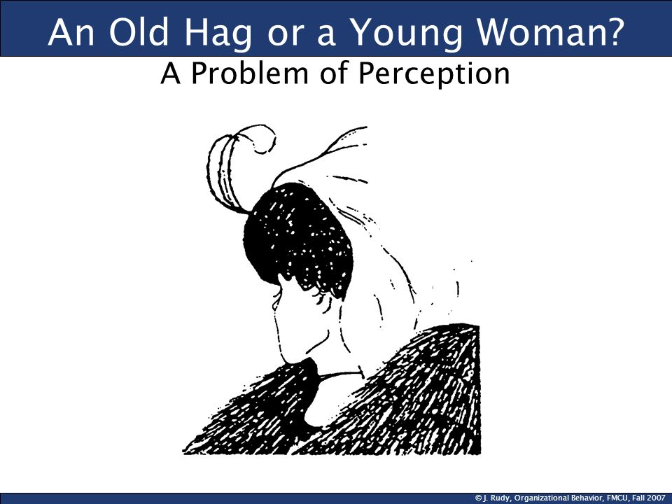 An Old Hag or a Young Woman A Problem of Perception