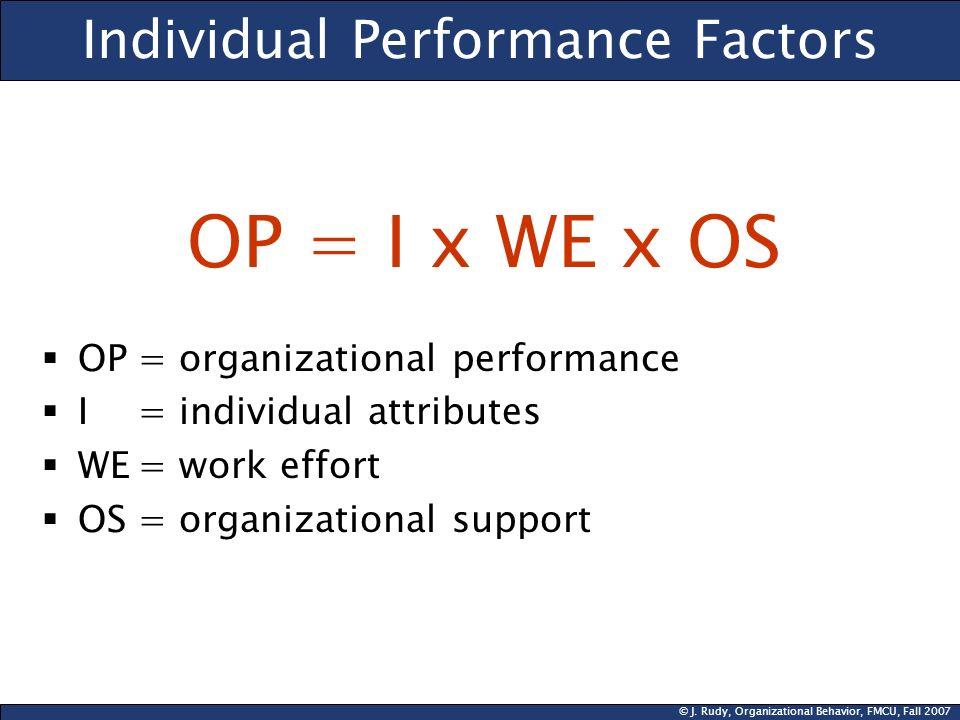 Individual Performance Factors