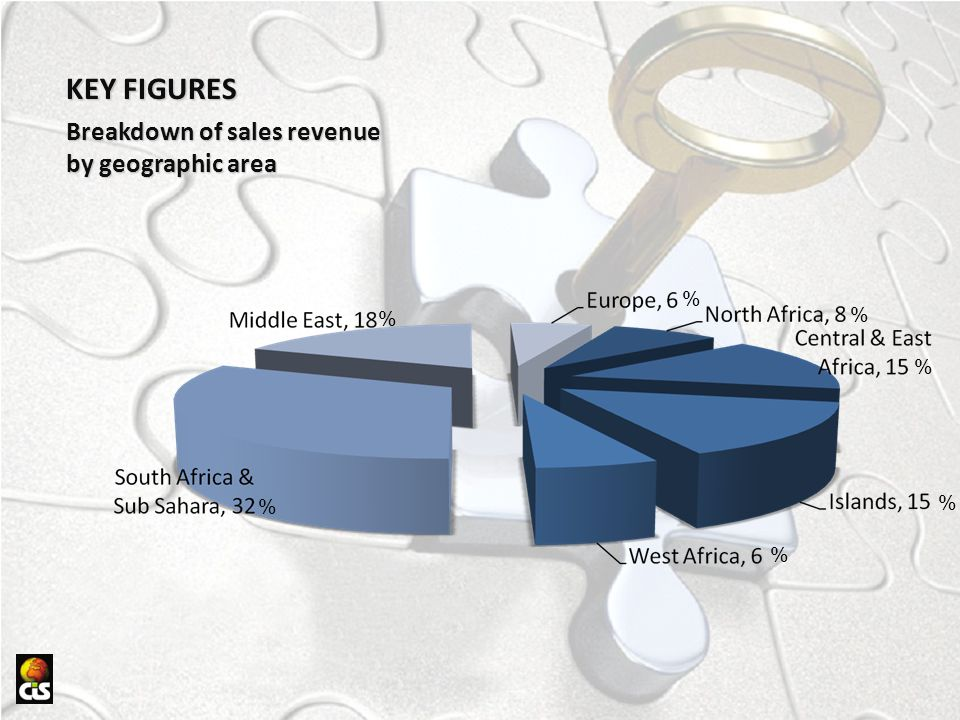 KEY FIGURES Breakdown of sales revenue by geographic area % % % % % %