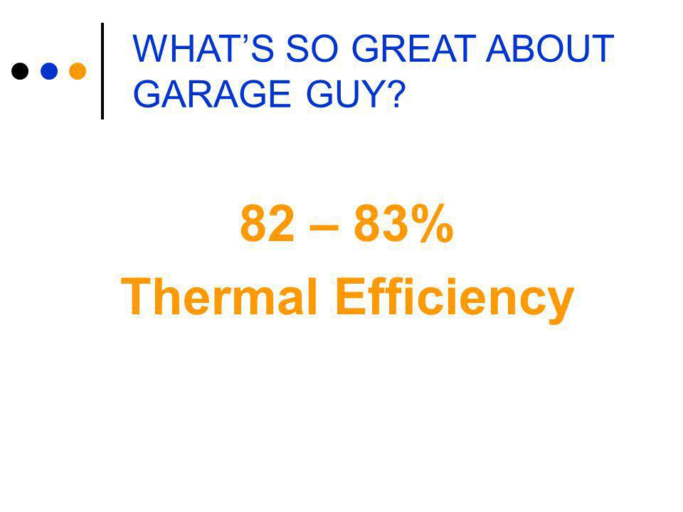 WHAT'S SO GREAT ABOUT GARAGE GUY