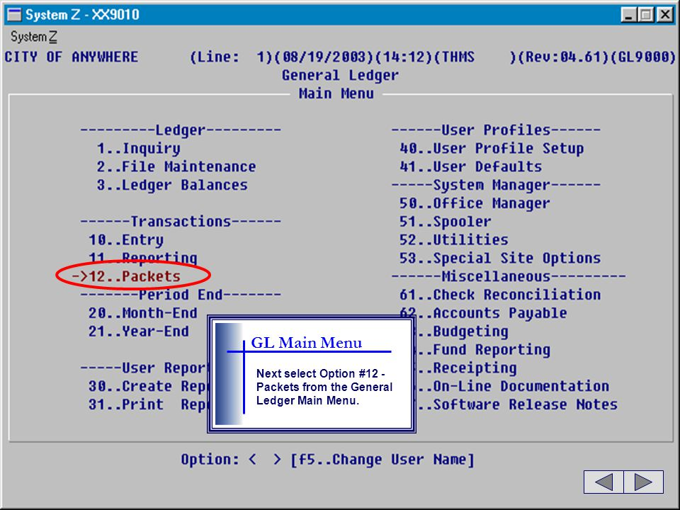 GL Main Menu Next select Option #12 - Packets from the General Ledger Main Menu.