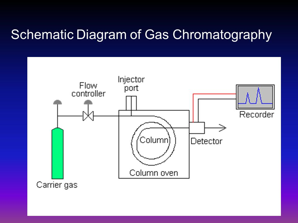 Schematic Diagram of Gas Chromatography