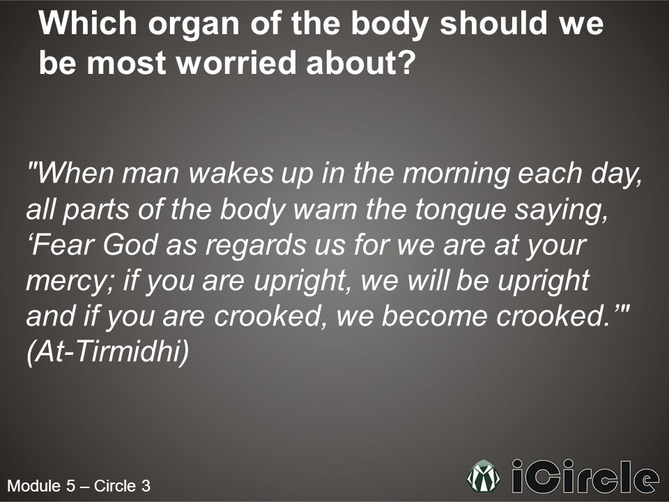 Which organ of the body should we be most worried about