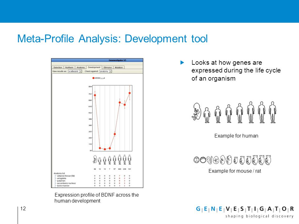 Meta-Profile Analysis: Development tool