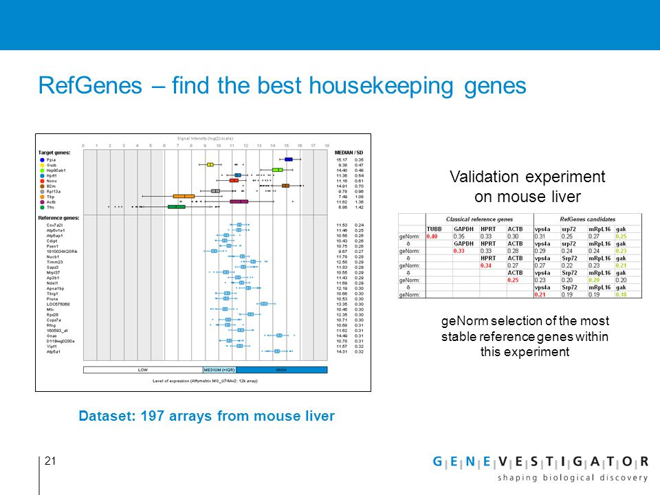 RefGenes – find the best housekeeping genes