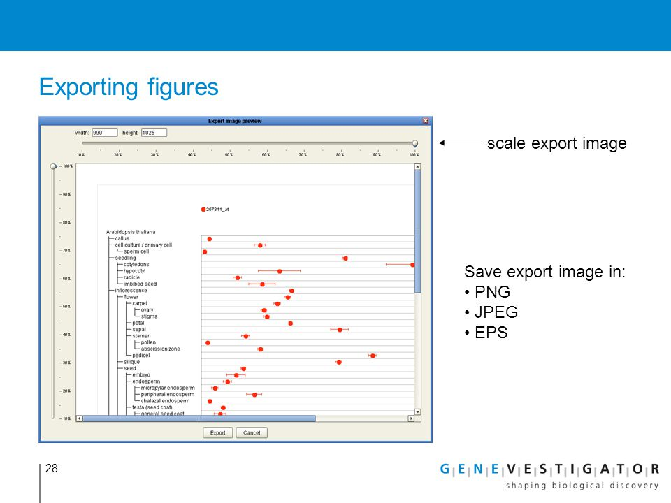 Exporting figures scale export image Save export image in: PNG JPEG