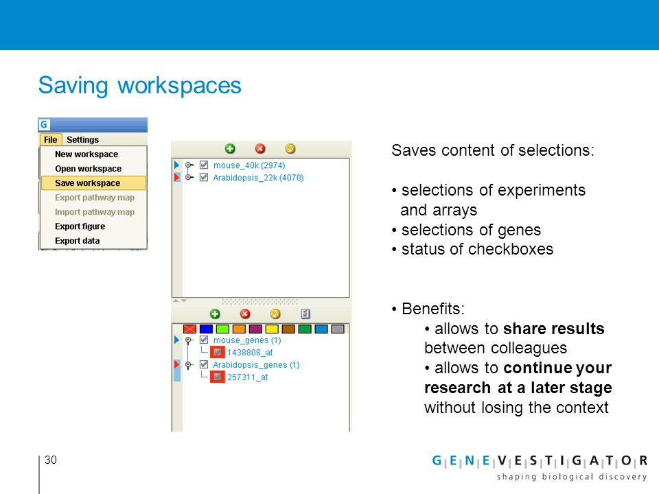 Saving workspaces Saves content of selections: