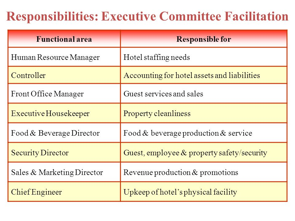 Responsibilities: Executive Committee Facilitation