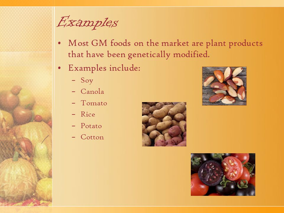 Examples Most GM foods on the market are plant products that have been genetically modified. Examples include: