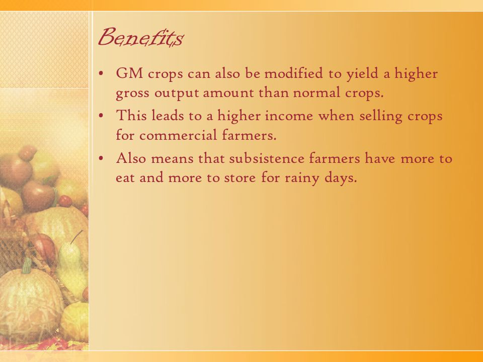 Benefits GM crops can also be modified to yield a higher gross output amount than normal crops.