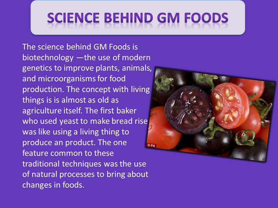 Science Behind GM FOODS