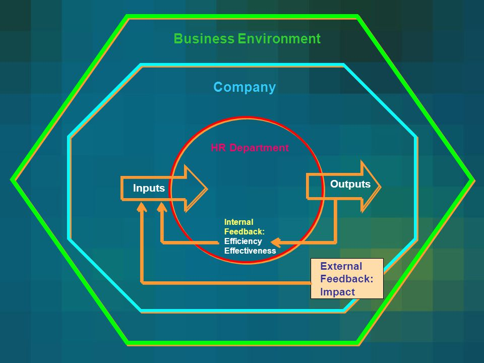 Business Environment Company HR Department Outputs Inputs
